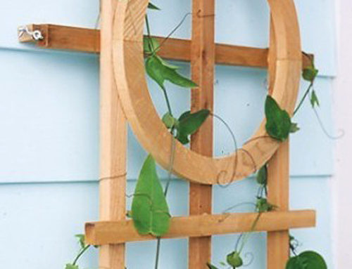 A Hinged Trellis is GardenWise