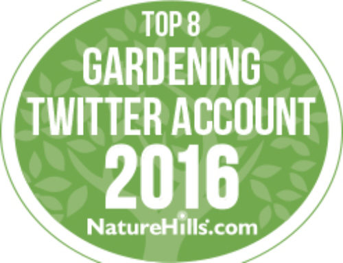 Top 8 Gardeners to Follow on Twitter